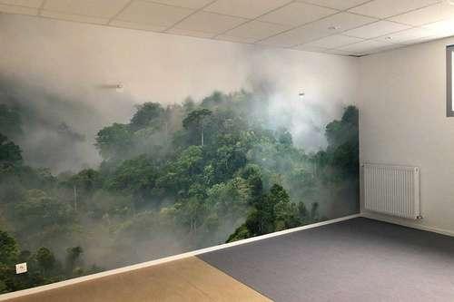 Les impressions numériques murales pour la décoration de votre bureau